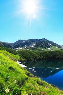 コバイケイソウ咲く立山室堂平よりミクリガ池に雄山と太陽の写真素材 [FYI03364737]