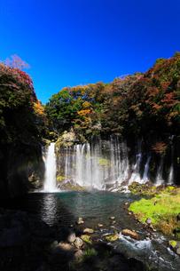 白糸の滝に虹と紅葉の写真素材 [FYI03364751]