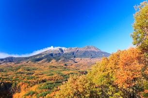 紅葉と快晴の御嶽山に噴煙とヒコウキ雲の写真素材 [FYI03364789]