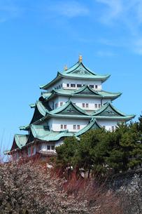 名古屋城天守閣とウメの写真素材 [FYI03364791]