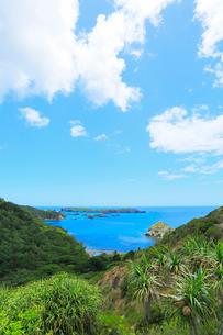 小笠原諸島父島・中山峠から南島を望むの写真素材 [FYI03364817]