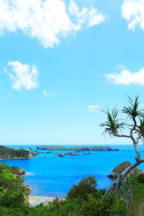 小笠原諸島父島・中山峠から南島を望むの写真素材 [FYI03364856]