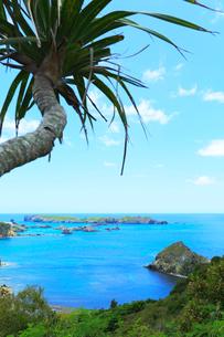 小笠原諸島父島・中山峠から南島を望むの写真素材 [FYI03364858]