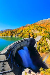 秋の立山・黒部ダム観光放水に虹と快晴の空に紅葉の写真素材 [FYI03364920]