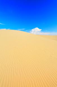 鳥取砂丘と日本海の写真素材 [FYI03364949]