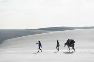 レンソイスの白砂の砂漠を歩くシルエットの写真素材 [FYI03365040]