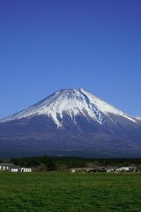 富士山と青空と高原の牧場の写真素材 [FYI03365094]