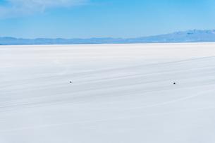 ウユニ塩湖を走る車の写真素材 [FYI03365163]