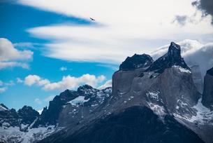 パタゴニアの空を舞うコンドルと名峰パイネ・クエルノの写真素材 [FYI03365202]