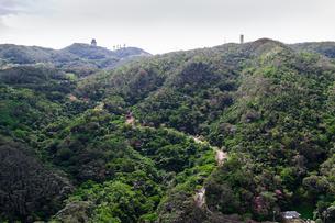 沖縄空撮 八重岳と桜の写真素材 [FYI03365437]