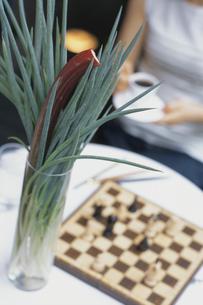 チェスと女性の写真素材 [FYI03365529]