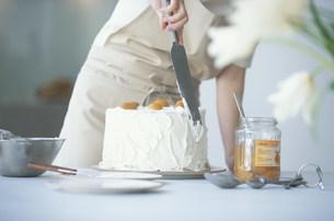 シフォンケーキにクリームを塗る女性の写真素材 [FYI03367248]