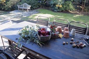 庭のテーブルの上の野菜の写真素材 [FYI03367394]