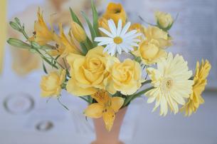 花瓶の花の写真素材 [FYI03367799]