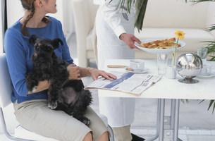 犬を抱いた女性と料理をを置くウェイターの写真素材 [FYI03368021]