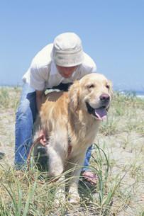 草原で犬(ゴールデンレトリバー)と戯れる男性の写真素材 [FYI03368045]