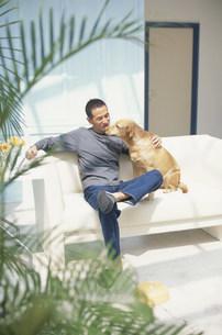 ソファに座って犬(ラブラドールレトリバー)と戯れる男性の写真素材 [FYI03368058]