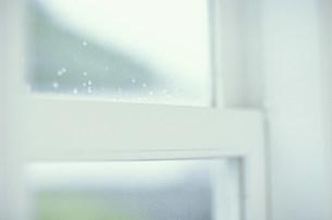 白い窓枠の写真素材 [FYI03368107]
