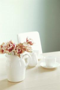 水差しに生けたチューリップと白のカップの写真素材 [FYI03368127]