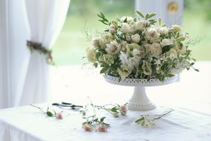 セルリア・トルコキキョウ・ブルーファンタジー等の盛り花の写真素材 [FYI03368153]