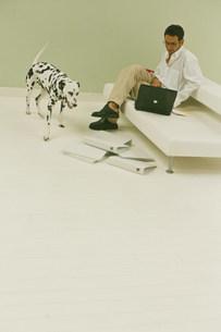 白いソファに座った男性と犬(ダルメシアン)の写真素材 [FYI03368201]