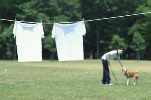 干した2枚のTシャツと犬と遊ぶ女性の写真素材 [FYI03368251]