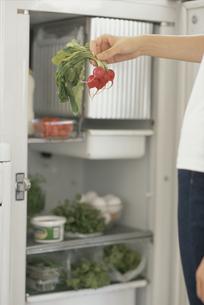 冷蔵庫から野菜を取出す女性の手の写真素材 [FYI03368393]