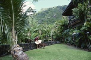 庭で犬をなでる男性サーファーの写真素材 [FYI03368434]