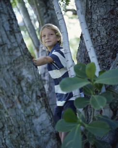 木と男の子の写真素材 [FYI03368513]