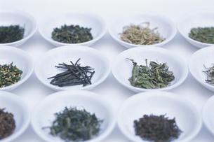 中国茶各種の写真素材 [FYI03368751]