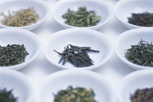 中国茶各種の写真素材 [FYI03368755]