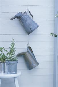 ハーブの鉢植えとじょうろの写真素材 [FYI03368836]