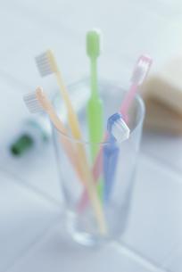 コップにさした5本の歯ブラシと奥に歯ミガキ粉の写真素材 [FYI03368908]