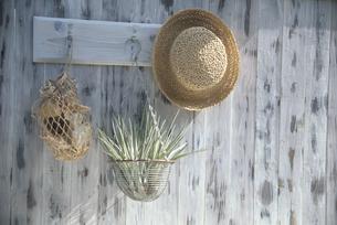 フックにかけた麦藁帽子・エアープランツ・メッシュ袋の写真素材 [FYI03368909]