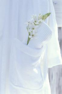 白バスローブポケットに白いタオルとオニソガラムの写真素材 [FYI03368917]