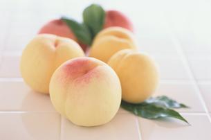 桃の写真素材 [FYI03369026]