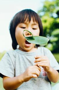 笹を持った男の子の写真素材 [FYI03369193]