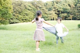 芝生でクロスを広げる女の子と男の子の写真素材 [FYI03369266]