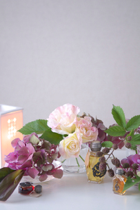 あじさいとトルコキキョウとブラックベリーとランプの写真素材 [FYI03369307]