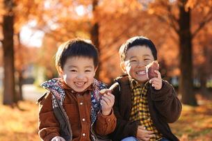 秋の公園で焼き芋を持つ子供の写真素材 [FYI03369936]