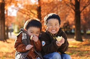 秋の公園で焼き芋を持つ子供の写真素材 [FYI03369939]