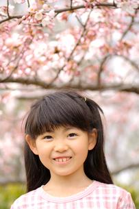 桜の前に立つ女の子の写真素材 [FYI03370146]