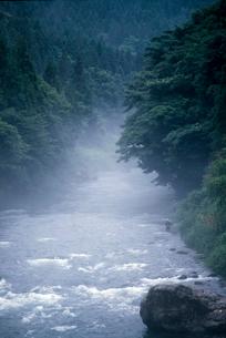 朝もやの長良川の写真素材 [FYI03371402]