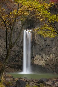 苗名滝の紅葉の写真素材 [FYI03371418]