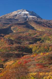鳥海山矢島口の紅葉の写真素材 [FYI03371419]