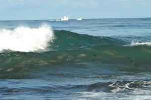 鮭の群れと漁船の写真素材 [FYI03371922]