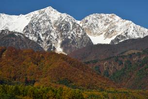 冠雪の白馬鑓ヶ岳 杓子岳の写真素材 [FYI03372067]