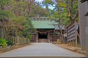 意富比神社船橋大神宮参道より神門を望むの写真素材 [FYI03372803]