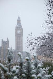雪の樹木とビッグベンの写真素材 [FYI03372903]