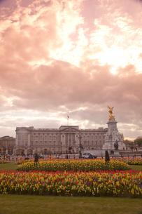 春のバッキンガム宮殿と夕方の雲と光の写真素材 [FYI03372914]